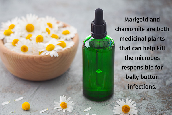 marigold and chamomile can help treat belly button infections