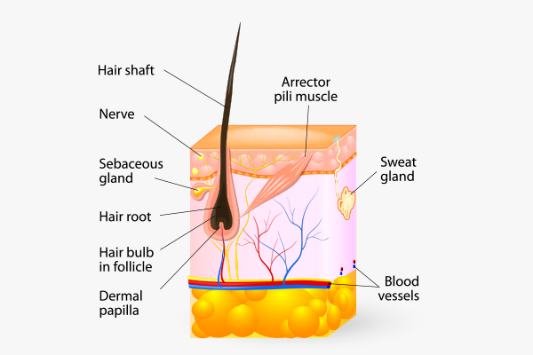 scalp buildup and smelly hair syndrome