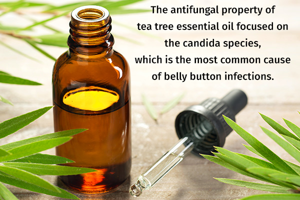 tea tree essential oil has antifungal properties